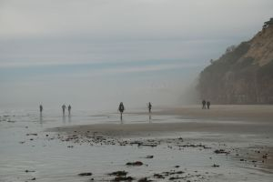 Walkers and Tide Poolers