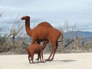 CAMELS B