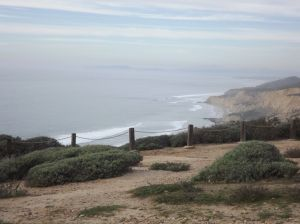 Cliff above Black's Beach