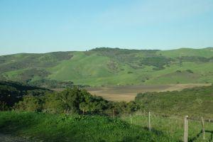 Rolling Hills Fields