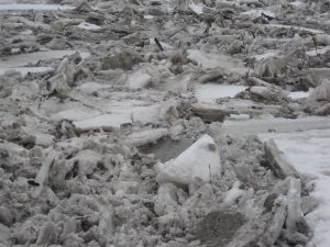Minnesota River Ice Jam - 2011 Henderson, MN
