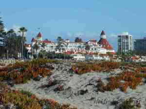 Hotel del Coronado - The place that grew Imperial Beach