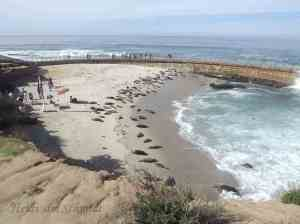 SEAL BEACH SEA WALL