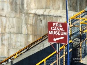 MUSEUM WM