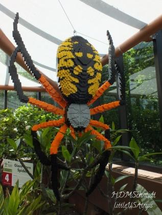GIANT CORN SPIDER - 16,492
