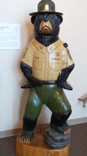 MR BEAR - CHIEF GAME WARDEN