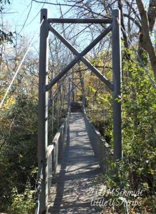 SUSPENSION BRIDGE LOOKING UP